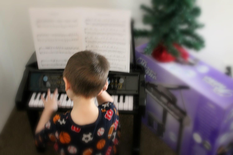 Baby Grand Piano Keys